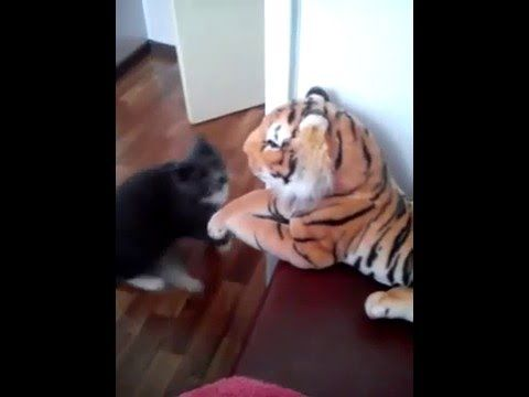 Cat Ounching Toy Tiger