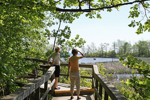 Rattray Marsh - Walking access from 50 Bexhill Road L5H 3L1. Limited parking and walking access at 1180 Lakeshore Road West.