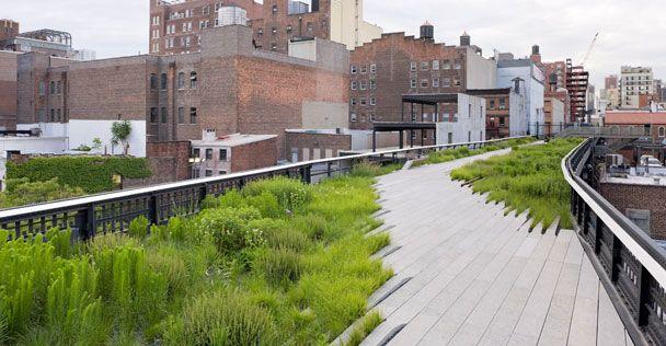 Arquitectura de paisaje.- consiste en la planificación, diseño, proyección, conservación y rehabilitación del espacio público, los espacios abiertos y el suelo.