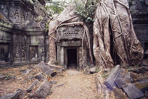 Ta Prohm, Angkor, Cambodia a must see in 2013?!: Buckets Lists, Dreams Vacations, Roots, Prohm Temples, Travel, Angkorwat, Angkor Wat Cambodia, Taprohm, Ta Prohm