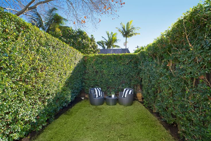 Private, sunny level garden, lush lawn, hedges, outdoor setting, pretty terrace, immaculate interiors, 20 Ferris Street, Annandale, Pilcher Residential