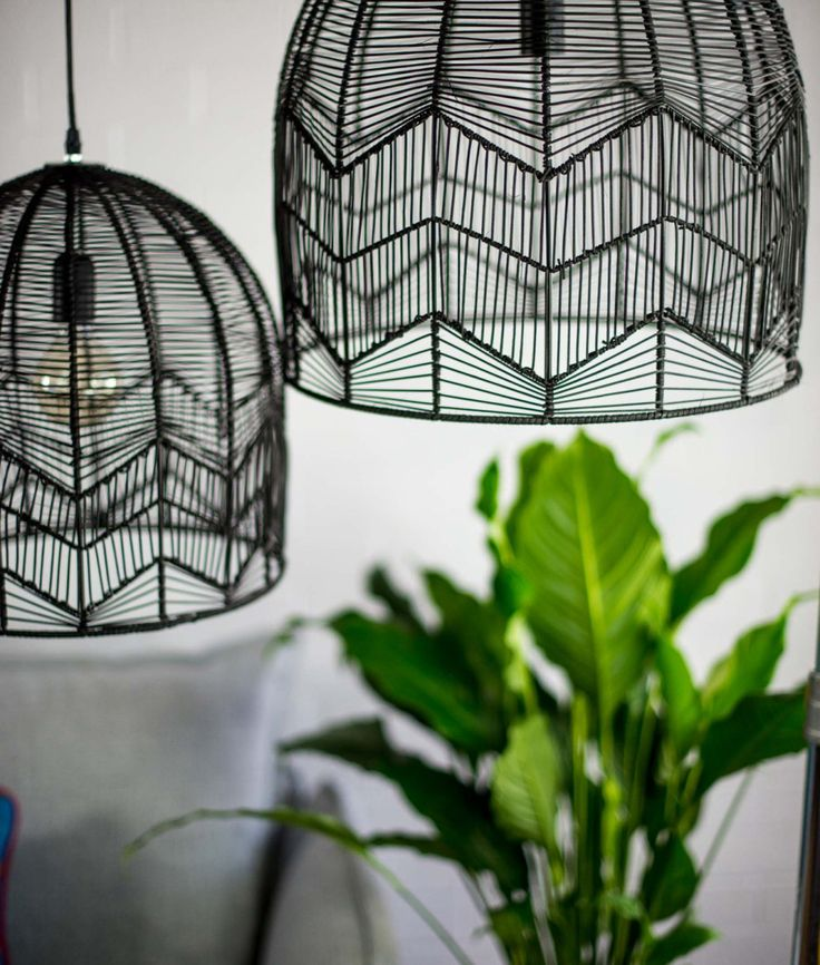 LACE RATTAN LIGHT – BLACK | Six By Eight | Store