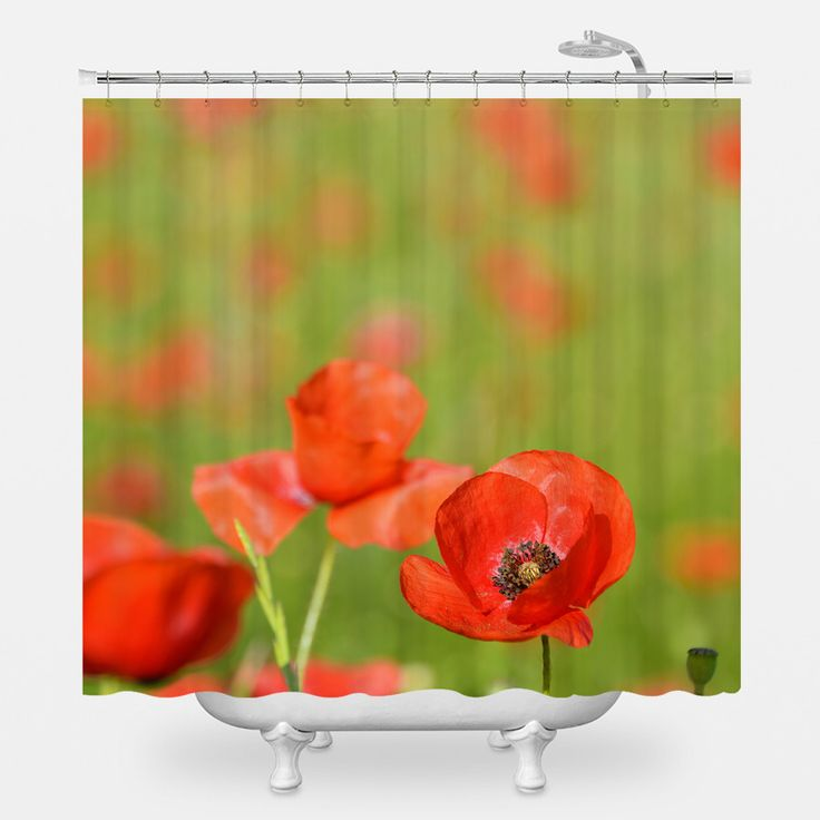 17 Best Ideas About Poppies On Pinterest