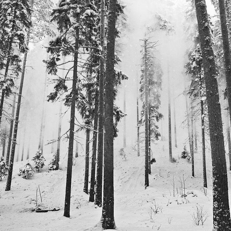 Pre Impact - Jyvaskyla, Southern Finland