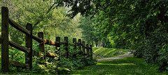 Providence Metro Park   Flickr - Photo Sharing!