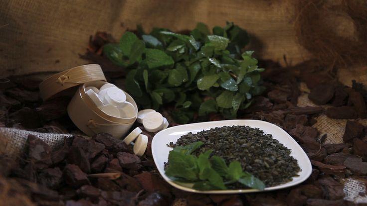 TwisTea Assortment // Green Menthos www.twistea.nl #twistea #letstwistea #letstwist #tea #brandnew #pure #label #drink #nature #enjoy #relax #experience #greentea #menthos #mint #greenmenthos