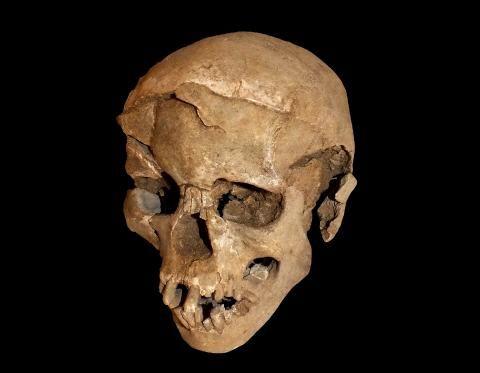 Ausgegraben: Bilder und Geschichten aus der Archäologie – SPIEGEL ONLINE – Nachrichten – Wissenschaft – steffi brock