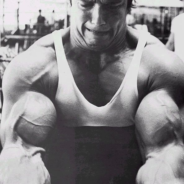 How Arnold can help you in your next workout