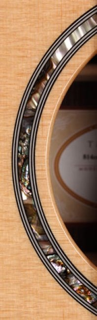The rosette inlay on the Taylor 814ce being sold on SmallWhiteMouse.com
