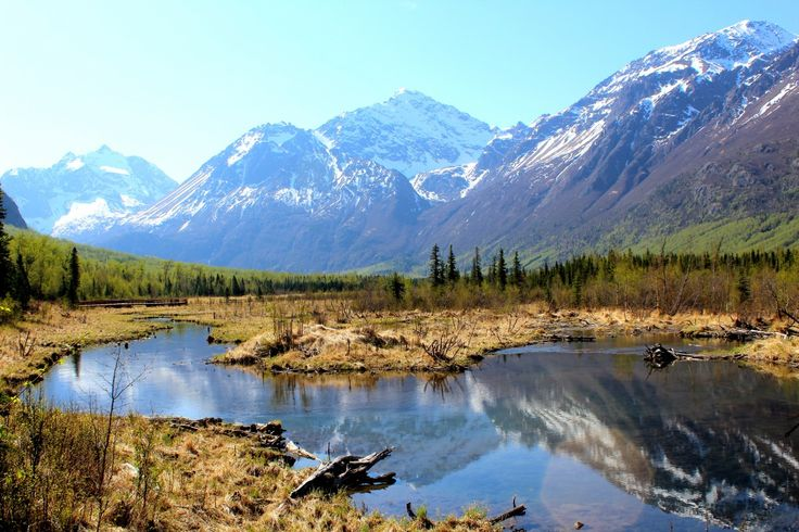 Ted Stevens Anchorage International Airport Photo Contest Entry - Eagle River Nature Center in Alaska