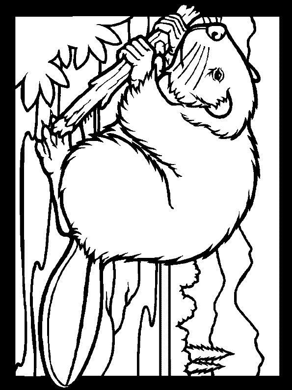 Animales 251 Dibujos Faciles Para Dibujar Para Ninos Colorear Ausmalbilder Ausmalbilder Tiere Malvorlagen Zum Ausdrucken