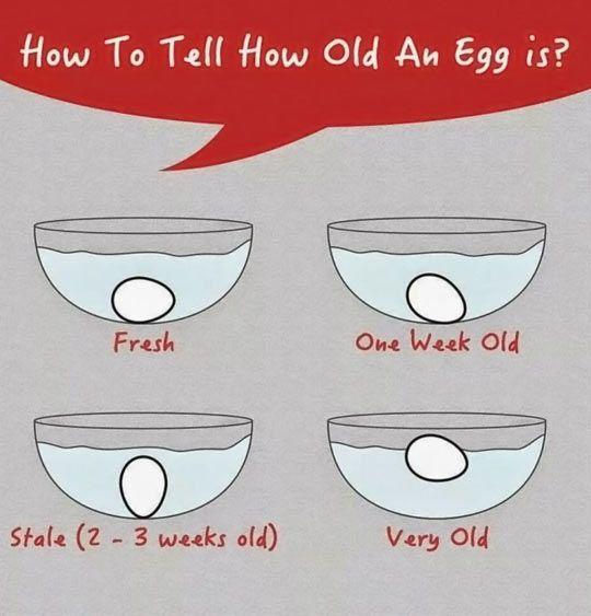 Capire quanto è vecchio un uovo