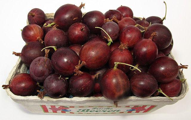 فوائد مذهلة لعنب الثعلب الهندي تجعلك لا تستغنى عنه Fruit No Cook Meals Berries