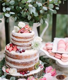 tortas sin cobertura - Google Search