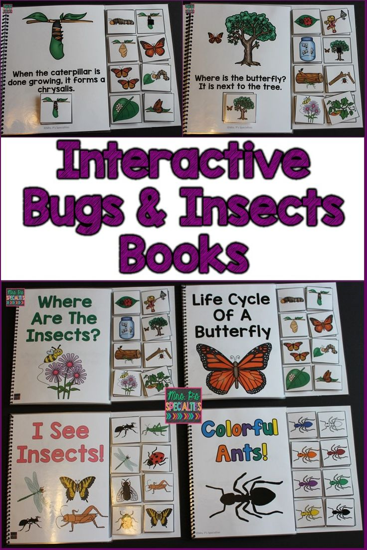 Four interactive books all about bugs and insects. These are perfect for getting students engaged and participating. The books integrate science skills with language development. They are ideal for special education classrooms and speech therapists. They are especially helpful for students with autism.