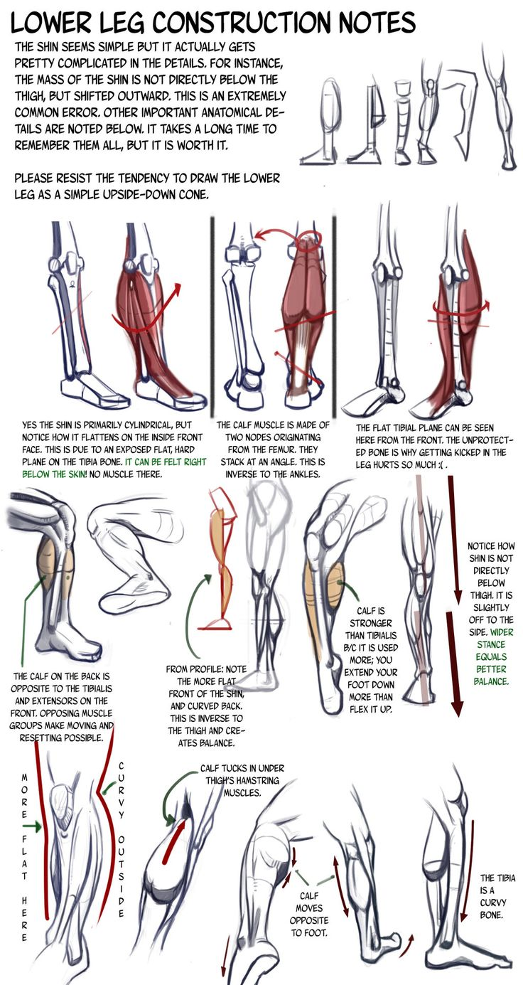 Lower Leg Construction Notes: details we forget by N3M0S1S on deviantART via PinCG.com