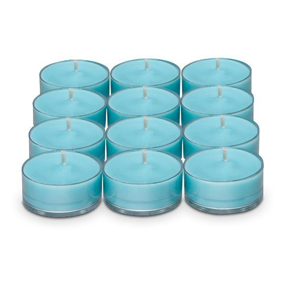 Discovery By Partylite Indian Blue Lotus Amp Ginger The