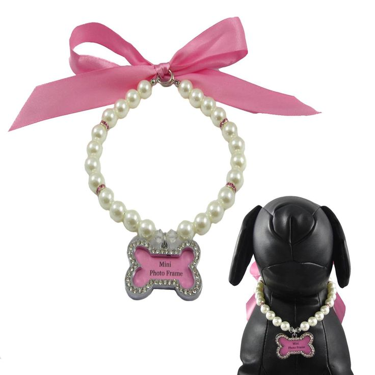 Alfie Couture Designer Pet Jewelry - Sue Pearl Necklace with Mini Photo Frame Charm - Color: Pink by One of a Kind Dog Necklaces