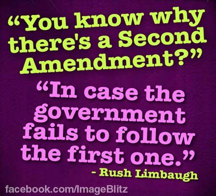 You Know Why There Is A Second Amendment? In Case The Government Fails To Follow The First One. Rush Limbaugh On Gun Control