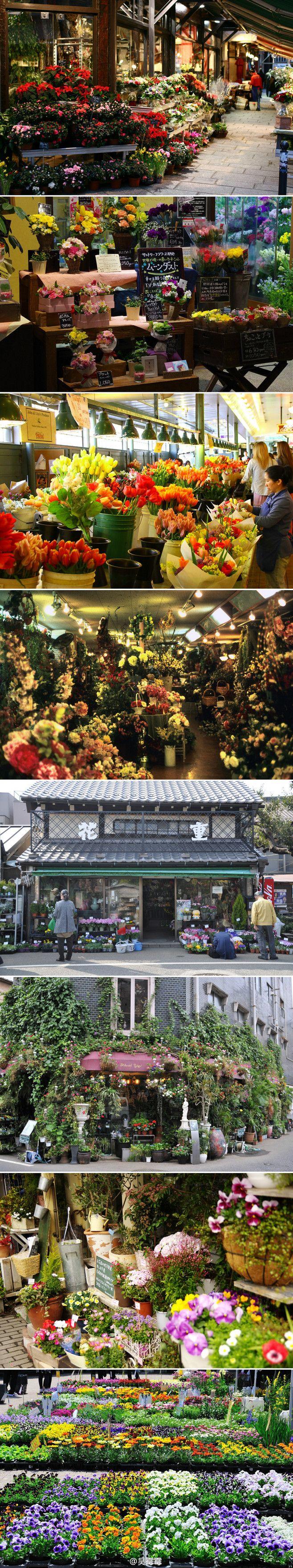 527e0c7597c57330e39d0848ede111f7--store-fronts-flower-shops Frais De Magasin De Jardinage Schème