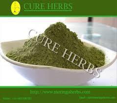 Image result for moringa oleifera leaves