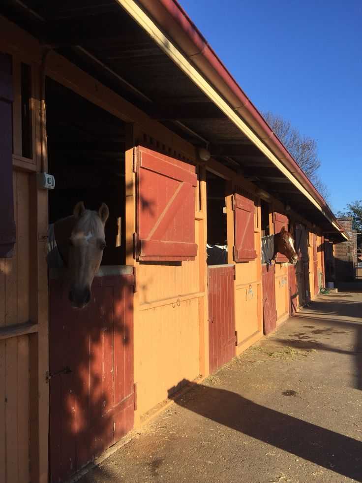 The horse stables at Centennial Park, Sydney - the best way to see the beautiful park