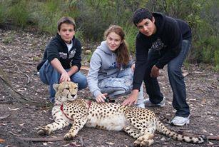 Tenequa Cheetah Reserve - near Plett with Judith, Josua and Xander - 2011