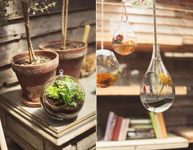 Cute hanging glass terrariums. Perfect to spice up a boring old condo patio.