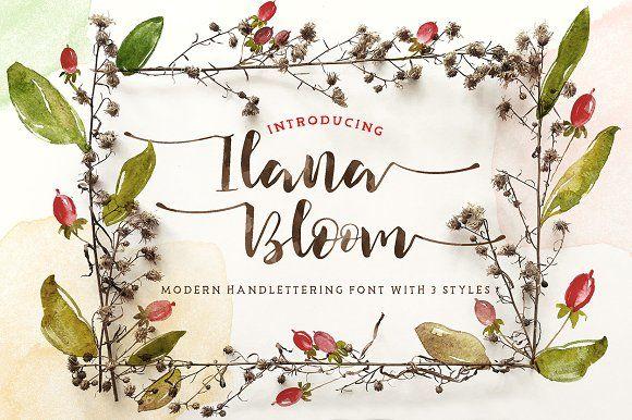 Ilana Bloom by KlapauciusCo on @creativemarket