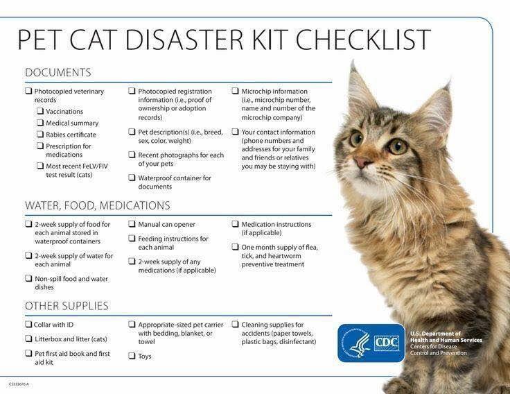 Are Your Pets Prepared Pet Emergency Cat Emergency Pet Emergency Kit