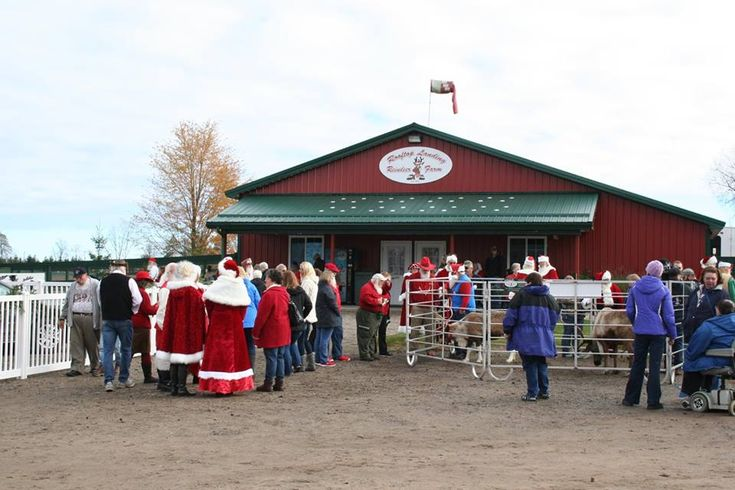 Visit with some of Rudolph's closest friends at this unique farm in the Great Lakes State.