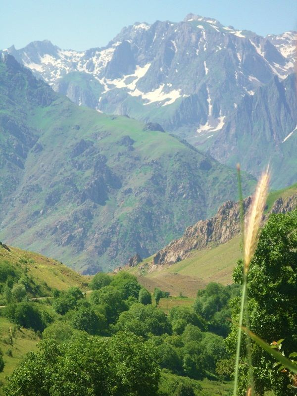 Kaçkar Mountains or simply Kaçkars are a mountain range that rises above the Black Sea coast in eastern Turkey.