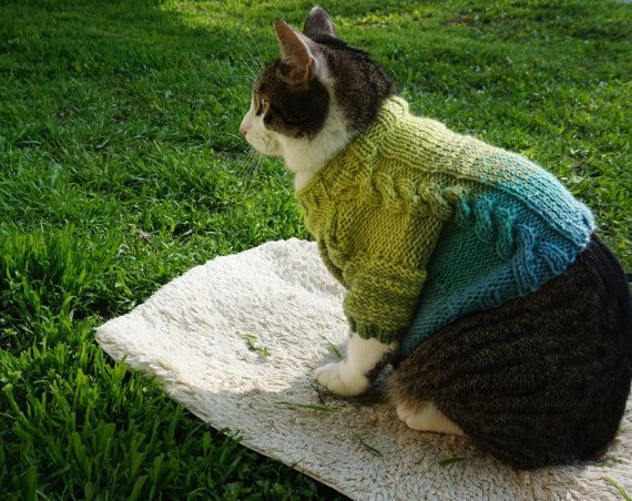 Green Sweater for Cat or Dog - Knit Wool Top - Gradient Color - Handmade Clothes for Pets - Cat Clothes - Dog Clothes