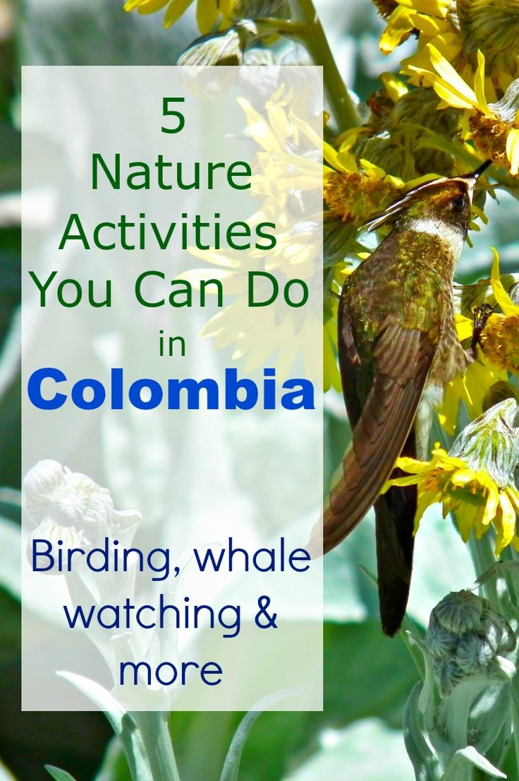 Nature lovers should head to Colombia ASAP!