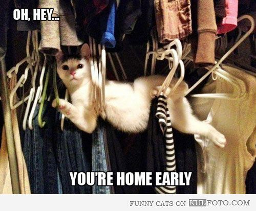 Oh, hey... You're home early.