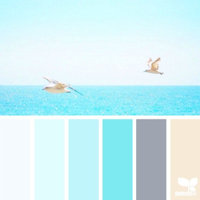breathe deep & enjoy a sunny seaside break ... today's inspiration image for { color escape ) is by @ozgecenberci ... what a mental vacation! ... i love this little escape ... thank you Ozge for such an incredible + inspiring share in #SeedsColor !