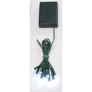10 Bulb LED Battery Light Set-Twinkling-Clear Bulb/Green Cord