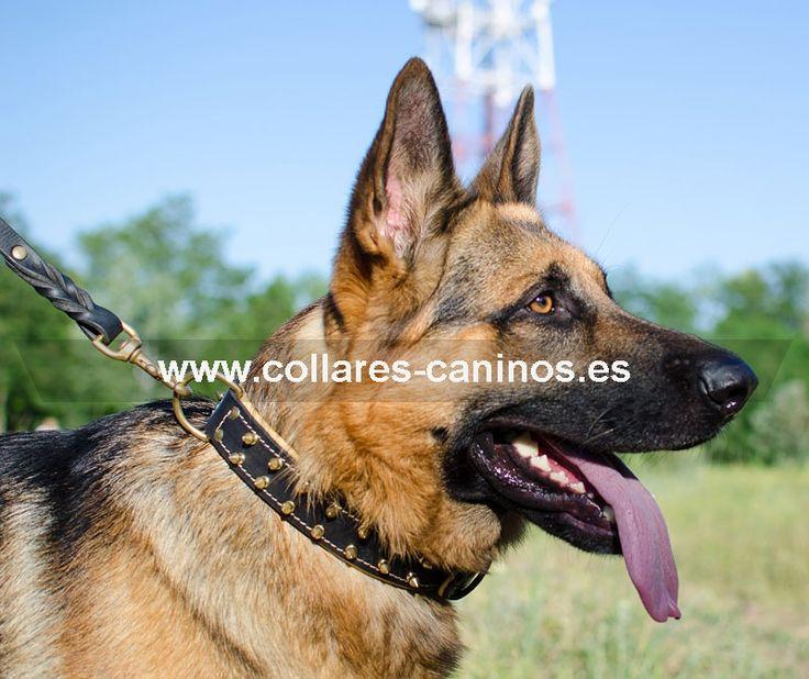 Extra c modo collar de paseo cuero y pinchos para perros for Collares para perros