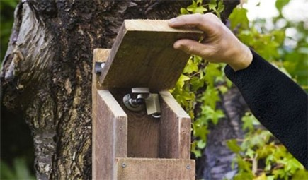 DIY How to install a bird nest box camera - Knowing that birds are using your nest box to raise a family is great, but imagine if you could watch them doing it. Miniature surveillance cameras are now available which allow you to do just that.