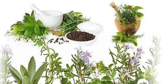 6 nejzdravějších a léty osvědčených receptů našich babiček, které skutečně zabírají (1)