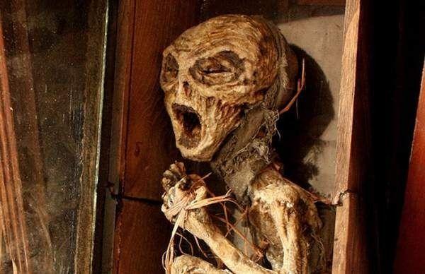 Berita Unik  – Pada tahun 2006, Kota London, Inggris gempar karena ditemukan ratusan kerangka makhluk aneh  di ruang bawah tanah sebuah ruma...