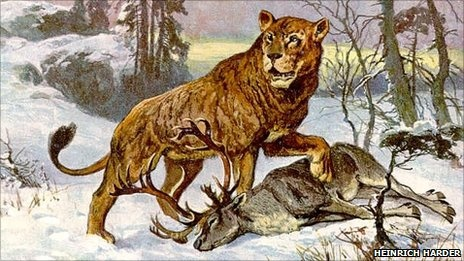 the Pleistocene cave lion
