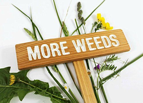 More Weeds Yard or Garden Sign, Painted & Oil Sealed Cedar Wood: Hand Routed, Funny Garden Sign, Gift for gardener, Custom Garden Marker