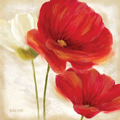 RB7000CC <br> Painted Poppies I <br> 12x12