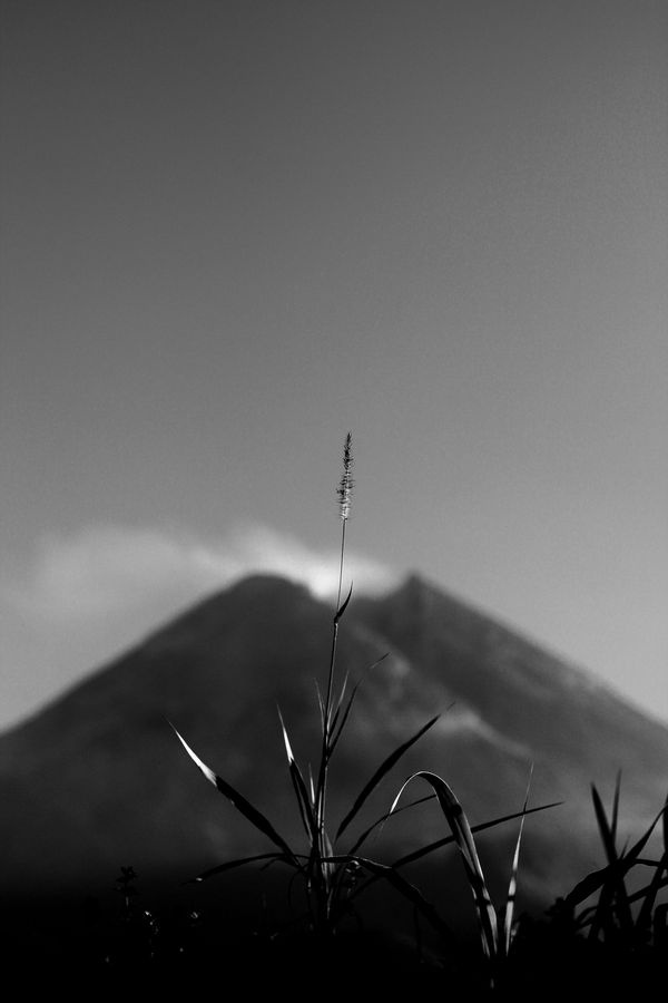 Gunung Merapi, jogja by Nanta Maulana, via Behance