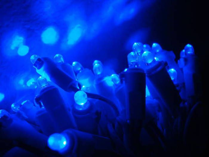 Cibi 'a luci blu' durano di più, led aiutano conservazione Cibi 'a luci blu' durano di più, led aiutano conservazione Università nazionale Singapore, Manda