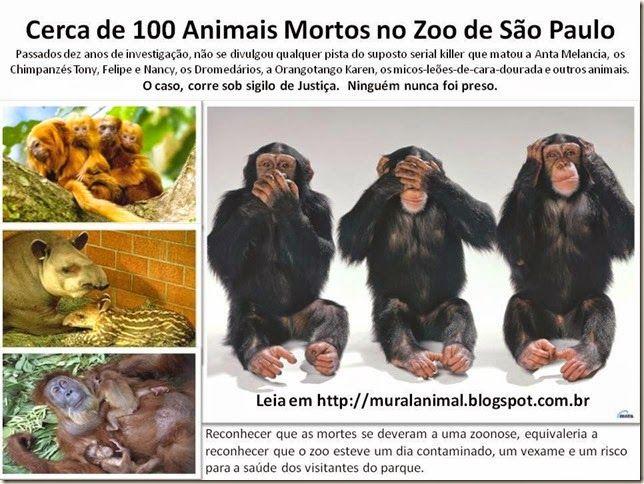 Mural Animal: Cerca de 100 Animais Mortos no Zoo de São Paulo