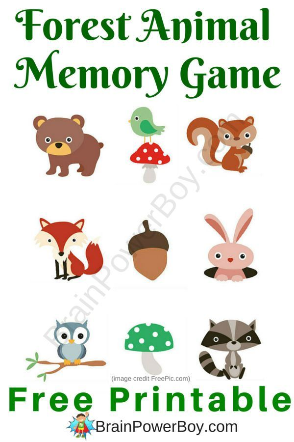 cute forest animal memory game printable games for kidskid printablesfree - Free Printable Games For Kids