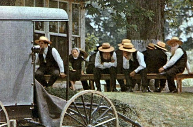 what i admire about the amish lifestyle essay In this essay i will first tell you about the history of the amish, how they became the amish we know today, and then tell you what a day in the life of an amish person is like i will tell you about their education, church, and the teenage rumspringa.