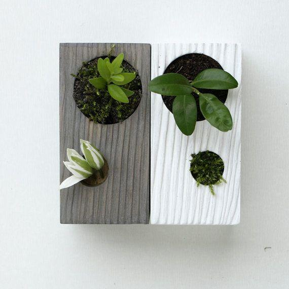 17 Best Images About Mini Zen Gardens On Pinterest 640 x 480